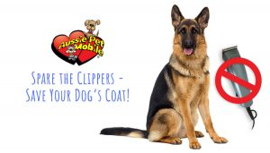 Spare the Clippers – Save Your Dog's Coat! - Sept 2020